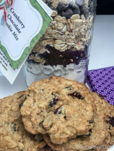 cranberry choco oat cookie mix